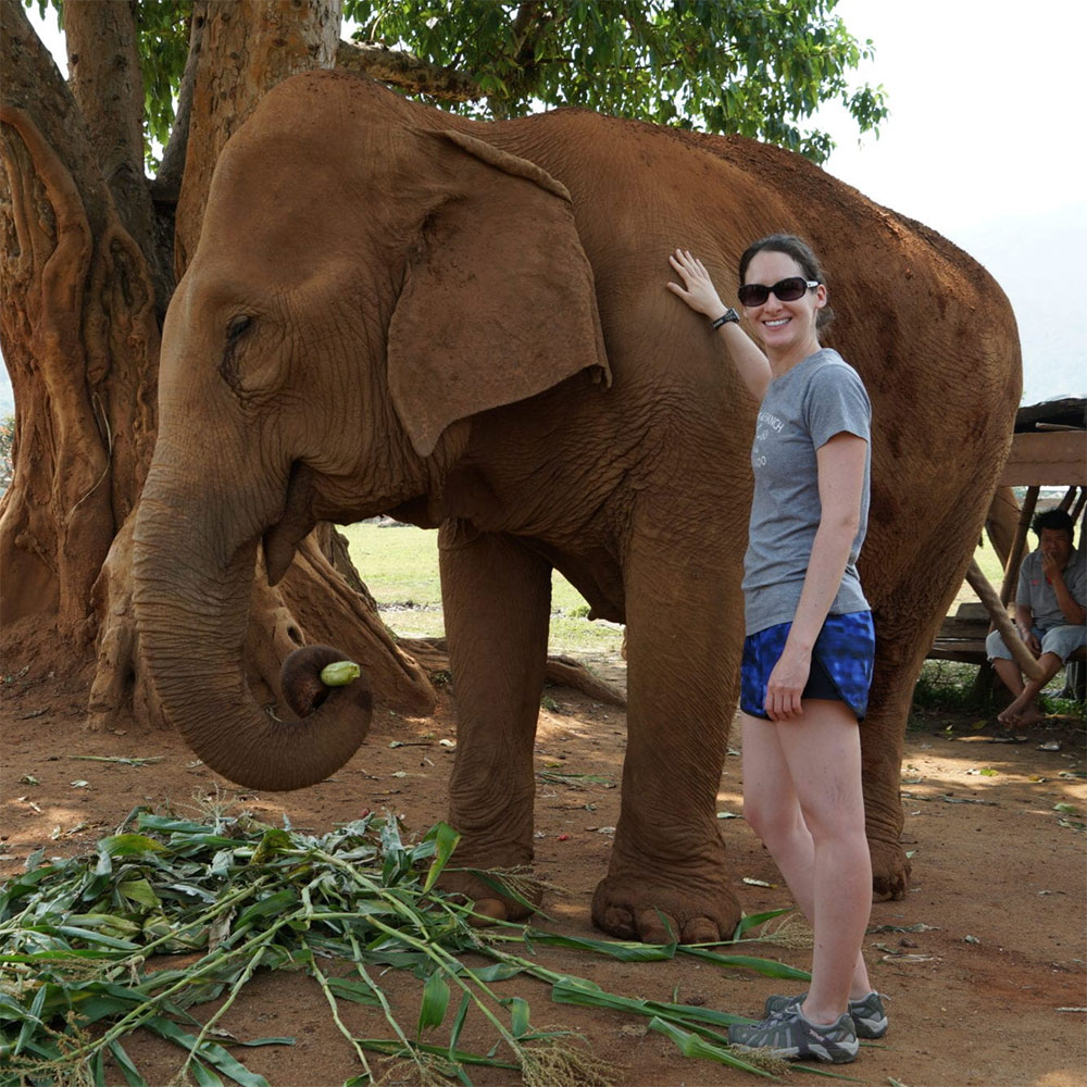 Experiencing an elephant sanctuary in Thailand…